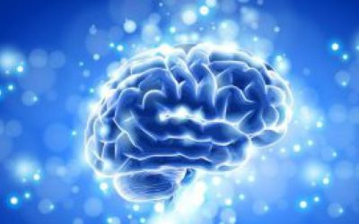 Healthy Brains Make Happy People
